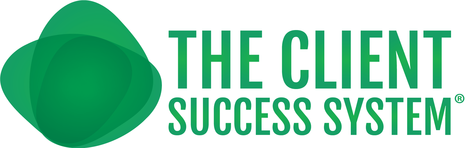 The Client Success System®